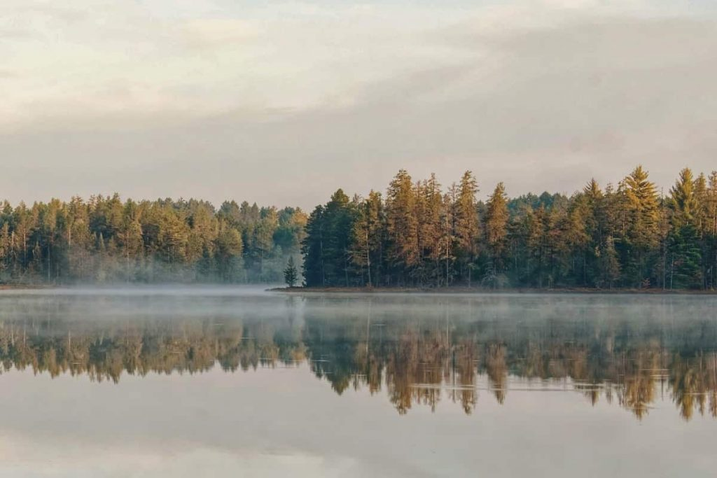 Best Airbnb Michigan Vacation Rental Trees Misty Lake Morning