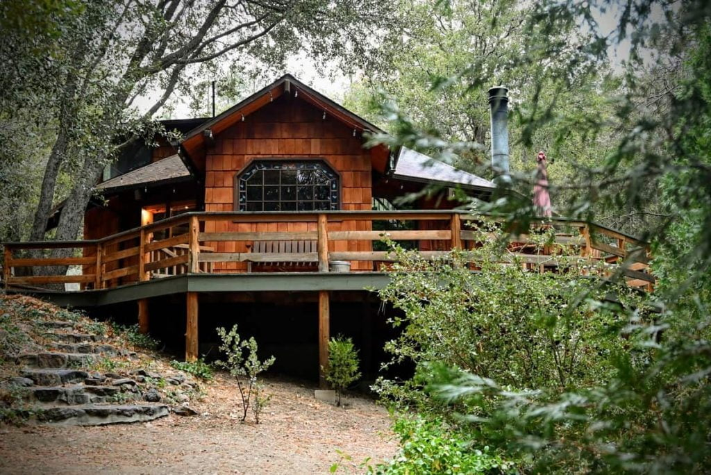 The Fox And Leopard Treehouse