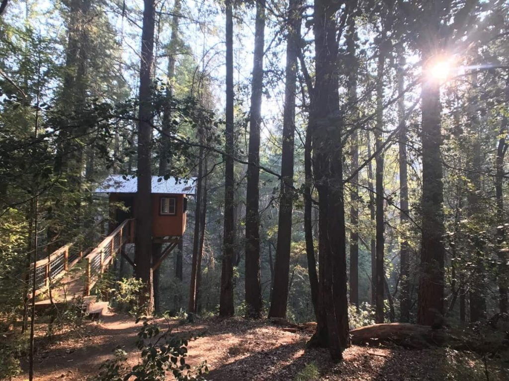 The Sanctuary Treehouse Rentals in California