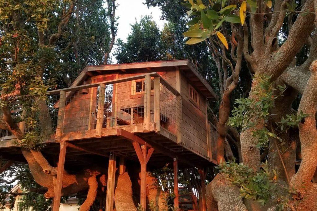 marin treehouse rentals in california