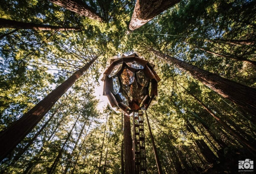 unique airbnbs in california treehouse